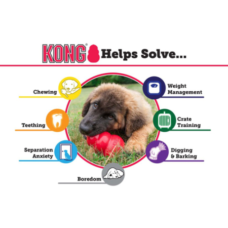 Kong Helps Solve..