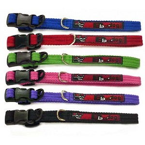 Black Dog Standard Dog Collar