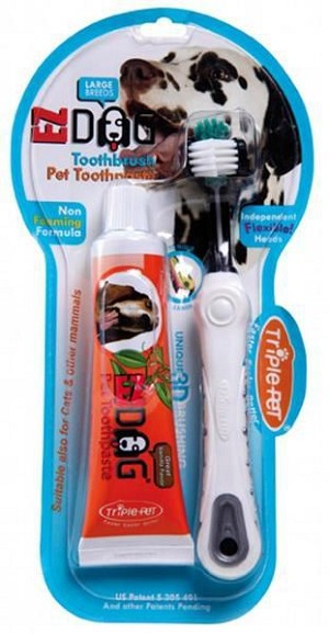 Toothbrush and Toothpaste Kit
